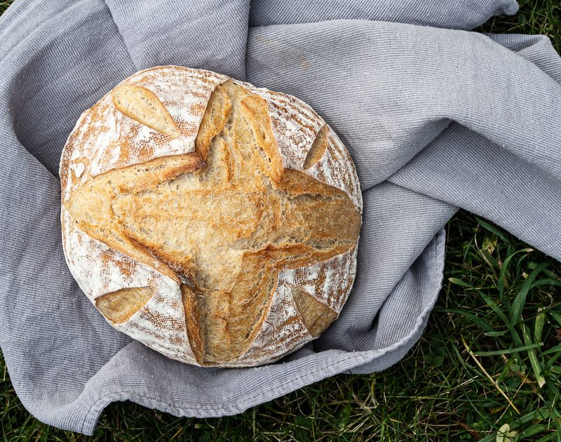 Brote für Brotbackstarter Nr.6: Das Helle & Einfache